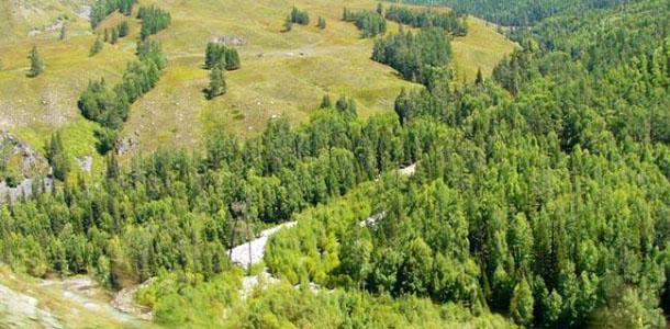 大小兴安岭景区位于大兴安岭山脉的东北坡,与俄罗斯联邦隔江相望,是祖国北部边疆纬度最高的地区之一。这里山峦叠翠,万顷林海一片碧波;江河湖泊,水光掩映,静谧清新,自然风光纯朴粗犷。我区旅游资源在中国北方的旅游资源分布体系中具有十分独特的优势。 大兴安岭森林生态旅游资源非常丰富:呼中自然保护区、黑龙江源头、中华北陲第一峰大白山、神州北极漠河村、中国北极点乌苏里等等旅游资源在我国具有很强的独特性和垄断性。大兴安岭的旅游资源具体表现为大森林、大冰雪、北极光、大界河等四个鲜明的特色,这些鲜明的特色又都是生态